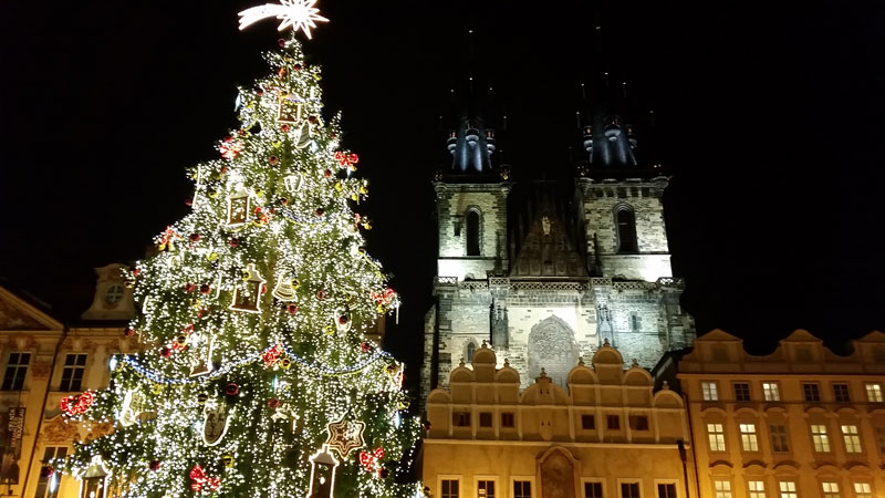 prague old town square christmas tree and tyn church at night
